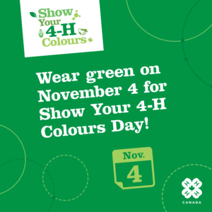 Show Your 4-H Colours!