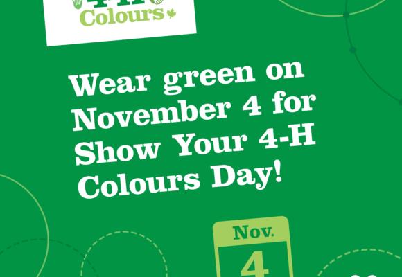 Show Your 4-H Colours!