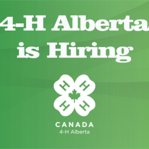 Join Our Team – 4-H Alberta is Hiring!