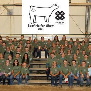 4-H Alberta Beef Show